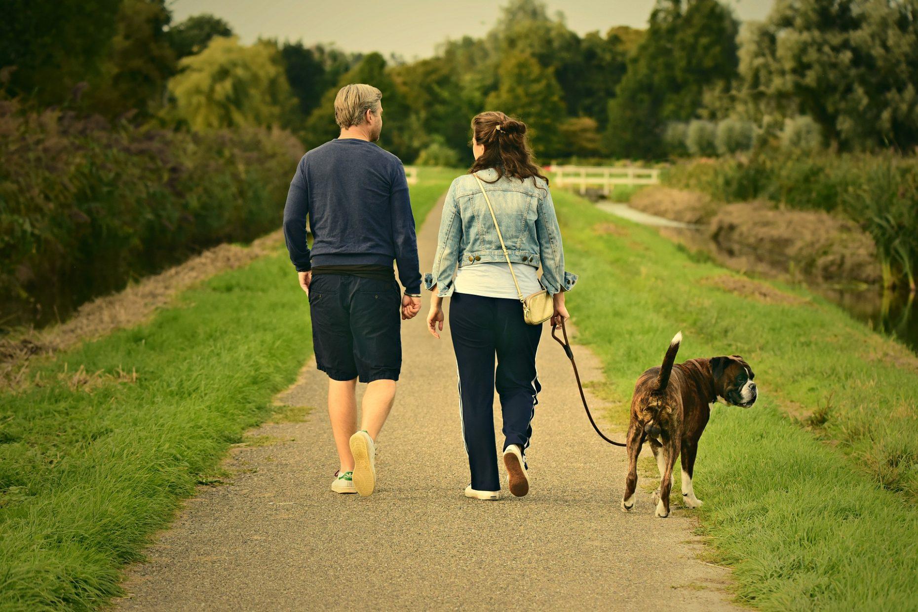 Benefits of dog walking