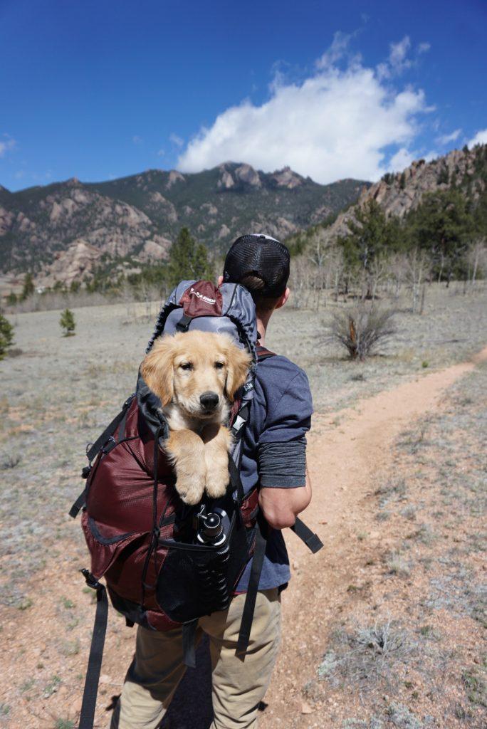 hiking survival kit