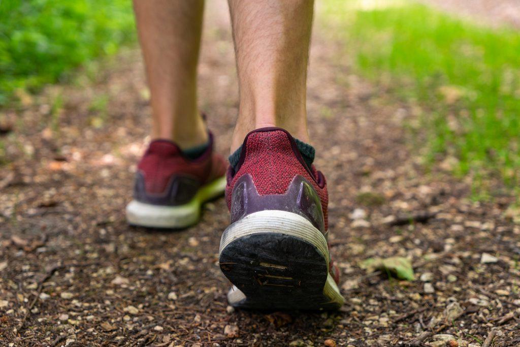 brisk walking improves immunity
